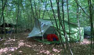 Waldfreizeit2020_Schlaflager